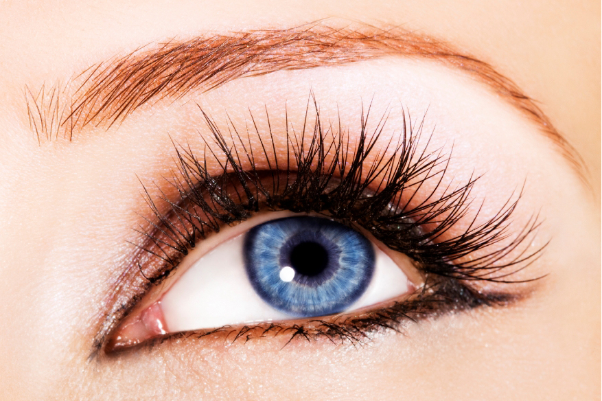 How to Grow Thick Eye Lashes