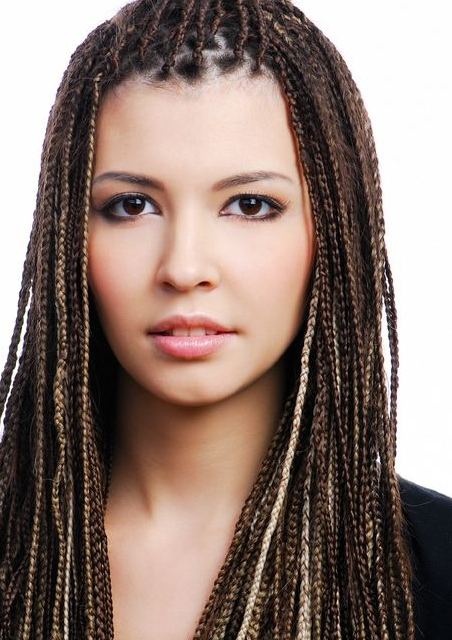 Plaited African Hairstyle