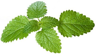 Mint Home Remedies for Dark Circles