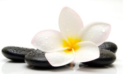 Hot stone masage rocks